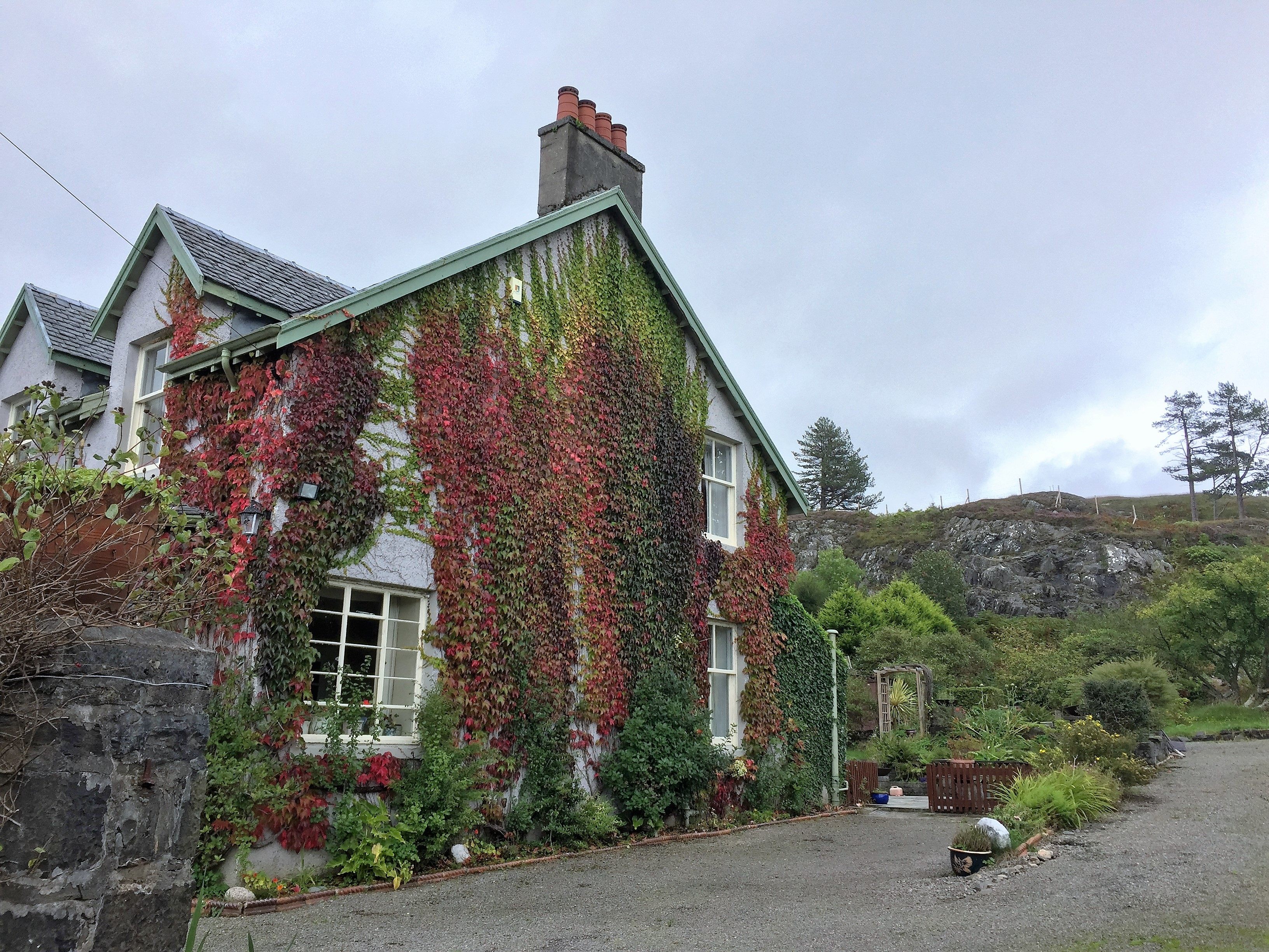 A house in Morar with beautiful vines.